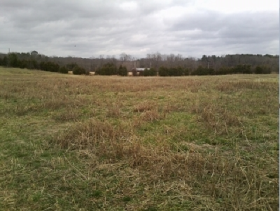 Delano Residential Lots & Land For Sale: Tract 5 Chestuee Road