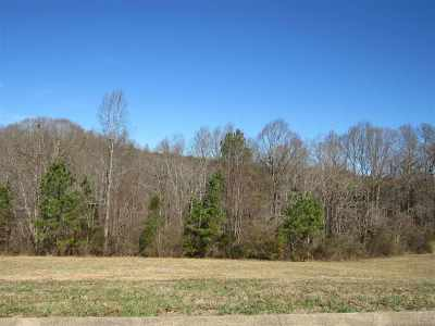 Niota Residential Lots & Land For Sale: County Road 321 Lot 7