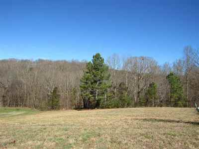 Niota Residential Lots & Land For Sale: County Road 321 Lot 6