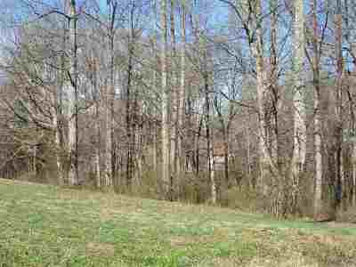Niota Residential Lots & Land For Sale: County Road 321 Lot 1 & 2