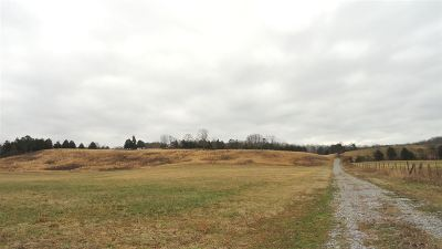 Meigs County Residential Lots & Land For Sale: 291/363 Thompson Bivens Road