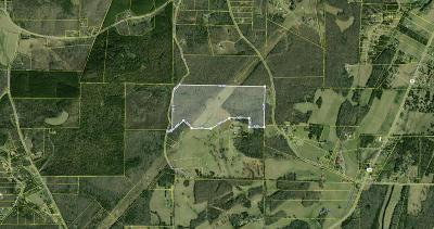Meigs County Residential Lots & Land For Sale: Will Allen Road
