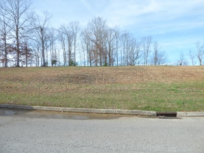 Roane County Residential Lots & Land For Sale: 125 Highland Reserve Way