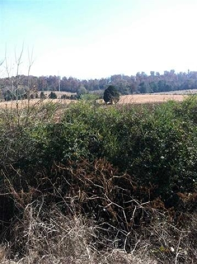 Riceville Residential Lots & Land For Sale: Hwy Us 11 South