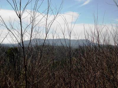 Madisonville Residential Lots & Land For Sale: Lot 134 Polly Mountain
