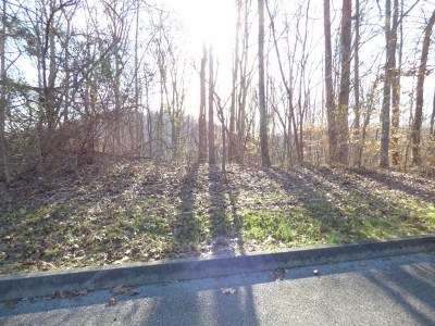 Roane County Residential Lots & Land For Sale: Lot 4 Sheerwater Road