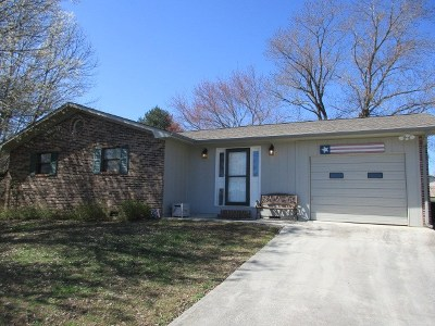 Dayton Single Family Home For Sale: 294 Haywood Lane
