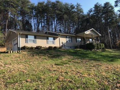 Athens Single Family Home For Sale: 938 County Road 655