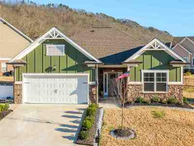 Ooltewah Single Family Home Contingent: 8052 Perfect View