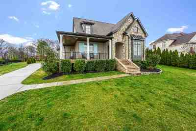 Single Family Home For Sale: 7363 Splendid View Dr