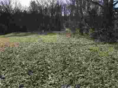 Riceville Residential Lots & Land For Sale: 5 Ac County Road 4