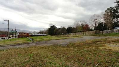Etowah Residential Lots & Land For Sale: 398 N Tennessee Avenue