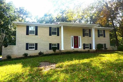 Cleveland Single Family Home For Sale: 1143 Eldredge Drive NW