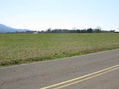 Etowah Residential Lots & Land Contingency 48hr (+/-): Tract #5 County Road 475