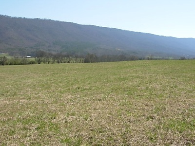 Etowah Residential Lots & Land For Sale: Tract #10 County Road 475