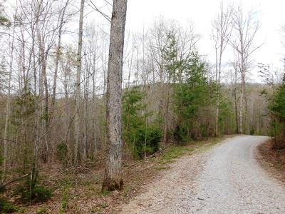 Tellico Plains Residential Lots & Land For Sale: Mecca Pike