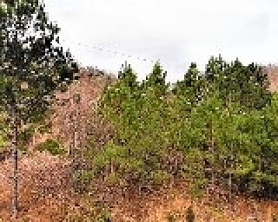Riceville Residential Lots & Land For Sale: County Road 754
