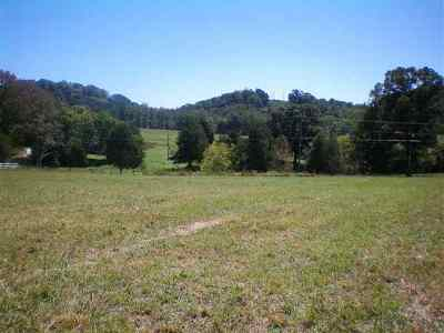 Athens Residential Lots & Land For Sale: 386 Highway 307