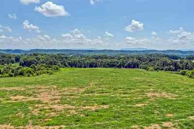 Riceville Residential Lots & Land For Sale: 224 County Road 728