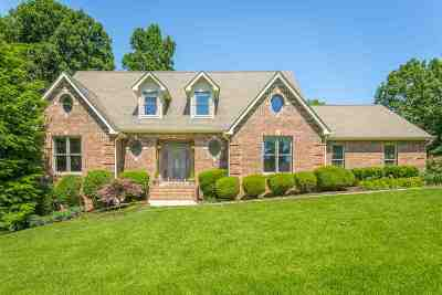 Single Family Home For Sale: 6817 Lake Hollow Dr