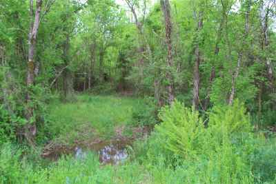 Niota Residential Lots & Land For Sale: County Road 279