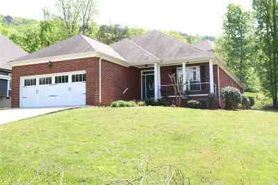 Ooltewah Single Family Home For Sale: 2800 Spicewood Ln