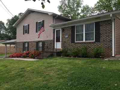 Single Family Home For Sale: 254 Anna Avenue