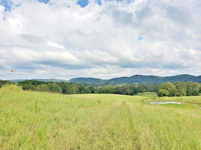Ten Mile Residential Lots & Land For Sale: Highway 58 North