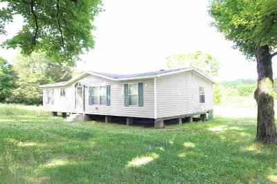 Riceville Single Family Home For Sale: 4696 Highway 11 S