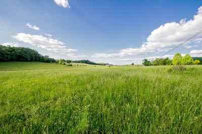 Roane County Residential Lots & Land For Sale: 201 Evans Rd