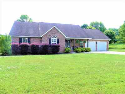 Riceville Single Family Home For Sale: 110 County Road 1154