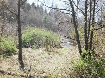 Tellico Plains Residential Lots & Land For Sale: Cooper Hollow