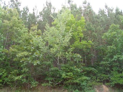 Riceville Residential Lots & Land For Sale: Lots 5 & 6 County Road 38