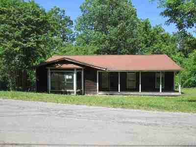 Spring City Single Family Home For Sale: 664 Lakewood Village Road