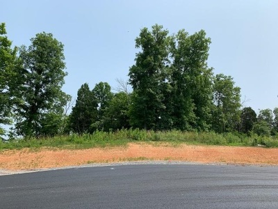 Roane County Residential Lots & Land For Sale: 188 Lake Ridge Drive
