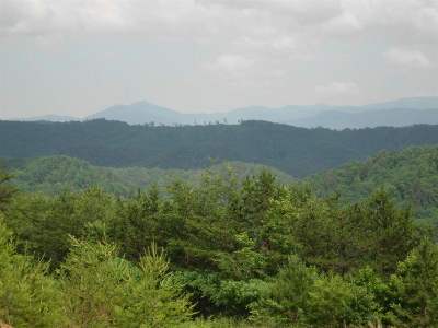 Tellico Plains Residential Lots & Land For Sale: Lot 33 Bullet Mountain
