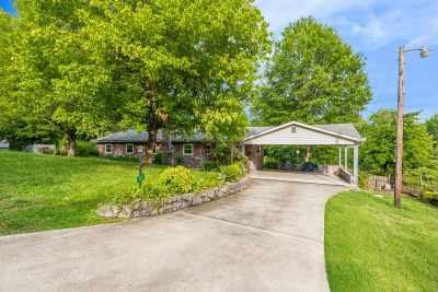 Spring City Single Family Home For Sale: 1629 Piney Point Road