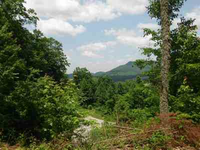 Tellico Plains Residential Lots & Land For Sale: Lot 30 Bullet Mountain