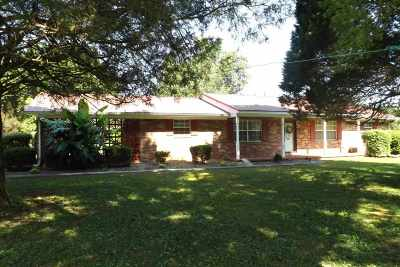 Spring City Single Family Home Contingent: 1632 New Lake Rd