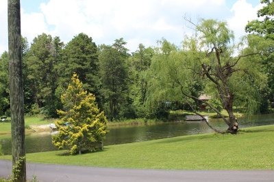 Madisonville Residential Lots & Land For Sale: Lot 263 Pine Loop Drive