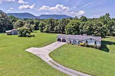 Etowah Single Family Home For Sale: 137 County Road 854