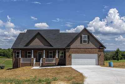 Single Family Home For Sale: 155 Overlook Road