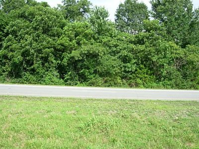 Etowah Residential Lots & Land For Sale: Highway 411 N