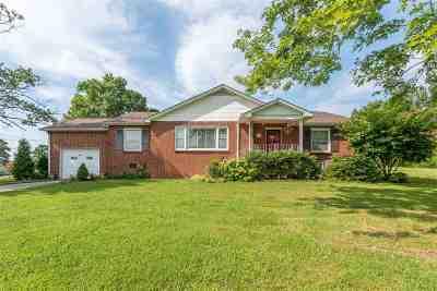 Spring City Single Family Home For Sale: 484 Kemmer Rd