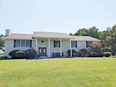 Decatur Single Family Home For Sale: 482 Brickell Ridge