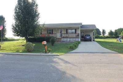 Spring City Single Family Home Contingent: 119 Jill Kristin Lane