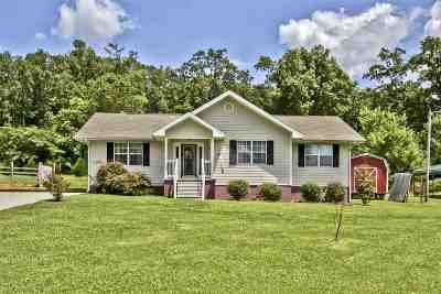 Single Family Home For Sale: 246 Circle Valley Circle