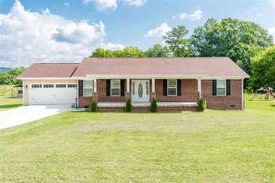 Single Family Home For Sale: 226 Foothills Drive