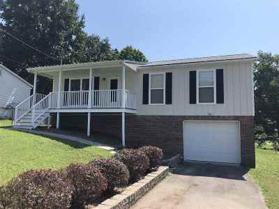 Cleveland Single Family Home For Sale: 2231 Spring Meadow Lane