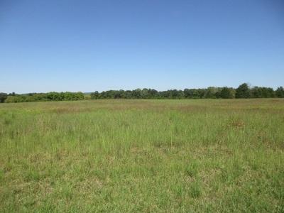 Rhea County Residential Lots & Land For Sale: 45ac Cochran Lane